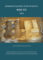 R.I.S.E. VII